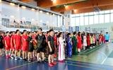 Giải cầu lông người Việt toàn châu Âu lần thứ VII