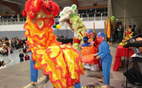 Tết Việt ở Âu châu: giữ gìn bản sắc dân tộc
