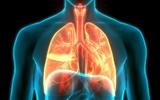 Tình trạng phổi sau khi nhiễm COVID-19: nó ở tình trạng nào và phải chăm sóc nó ra sao?