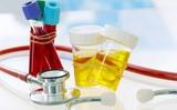 Tổng hợp về các xét nghiệm máu và nước tiểu