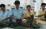 Nghi vấn về lô hàng quân trang xuất khẩu sang Úc