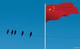 Giới tài phiệt Hoa kiều Đông Nam Á và quan hệ nhạy cảm với Trung Quốc