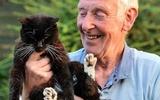 Con mèo già nhất thế giới