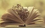 Bàn về khứu giác trong thơ