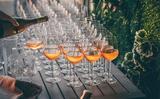 Rượu vang màu vàng đanh thành loại rượu ưa thích của người sành điệu