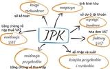 Kiểm soát báo cáo thuế tổng thể bằng tệp tin JPK – Nhận thức và lựa chọn của cộng đồng doanh nghiệp