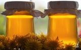 Si rô làm từ nụ hoa Bồ công anh dùng để làm tăng sức đề kháng của cơ thể. Hãy xem cách bào chế!
