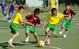 Thông báo của đội bóng đá học sinh