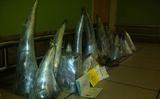Nam Phi bắt hai người Việt sở hữu sừng tê